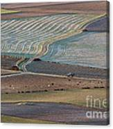 La Mancha Landscape - Spain Series-ocho Canvas Print