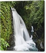 La Paz Waterfalls In Rainforest Costa Canvas Print