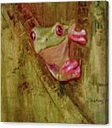 La Petite Grenouille Verte Canvas Print