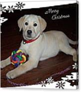 Lab Pup Merry Christmas Canvas Print