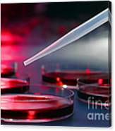 Laboratory Experiment In Science Research Lab Canvas Print
