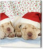 Labrador Puppy Dogs Wearing Christmas Canvas Print