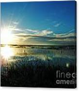 Lacassine Afternoon Sparkle Canvas Print