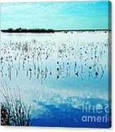 Lacassine Nwr Blue Pool Canvas Print