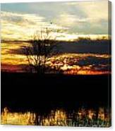 Lacassine Painted Sunset Canvas Print