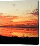 Lacassine Panarama Canvas Print