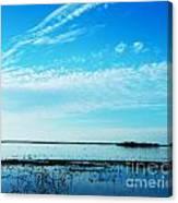 Lacassine Pool Louisiana Afternoon Canvas Print