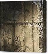 Lace Curtain 1 Canvas Print