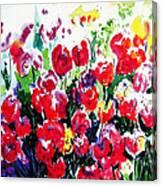 Laconner Tulips Canvas Print