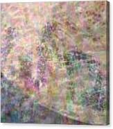 Lacunarity Canvas Print