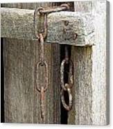 Ladder Chain Color Canvas Print