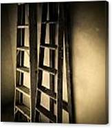 Ladders Canvas Print