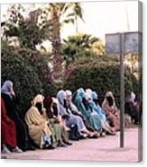 Ladies In Waiting Canvas Print