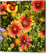 Lady Bird And Her Flowers Canvas Print