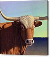 Lady Longhorn Canvas Print
