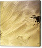 Ladybug On A Sunflower Canvas Print