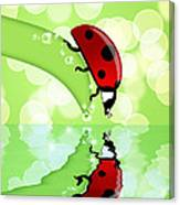 Ladybug On Leaf Looking At Water Reflection Canvas Print
