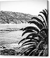 Laguna Beach California In Black And White Canvas Print