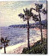 Laguna Beach Palm Vista Canvas Print