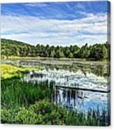 Lake At Acadia National Park Canvas Print