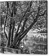 Lake Bench In Black And White Canvas Print