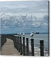 Lake Erie Gulls Canvas Print