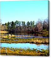 Lake Helen Lee Canvas Print