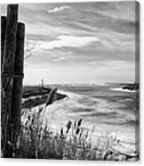 Lake Ice Bw Canvas Print