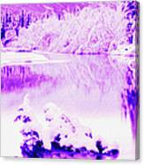 Lake And Ice Canvas Print