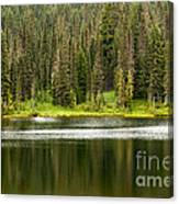 Lake In Mt Rainer National Park Canvas Print