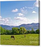 Lake Killarney From Aghadoe Hill County Kerry Canvas Print
