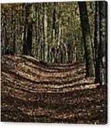 Lake Lansing Walk Canvas Print