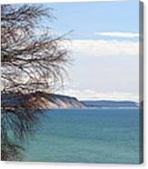 Lake Michigan Bluffs Canvas Print