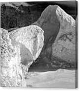 Lake Michigan Ice Viii Canvas Print