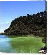 Lake Ngakoro Rotorua New Zealand Canvas Print