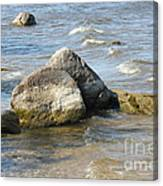 Lake Of The Woods Canvas Print