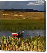 Lake Titicaca And Quinoa Field Canvas Print