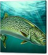 Lake Trout And Spoon Canvas Print