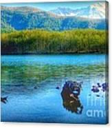Lake View Of Mount Saint Helens  Canvas Print