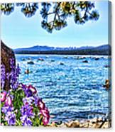 Lake View On Lake Tahoe By Diana Sainz Canvas Print