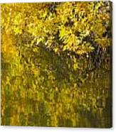 Lake Winona Autumn 12 Canvas Print
