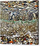 Lakeshore Rocks Canvas Print