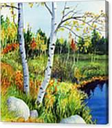 Lakeside Birches Canvas Print