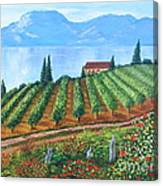 Lakeside Vineyard Canvas Print