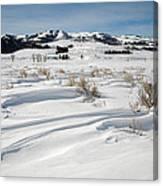 Lamar Valley Winter Scenic Canvas Print