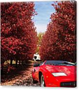 Lamborghini Maple Lane Big House Canvas Print