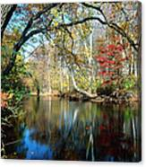Lamington River At Tewksbury  Canvas Print