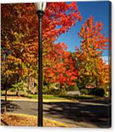 Lamp Post On The Corner Canvas Print