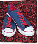 Lance's Shoes Canvas Print