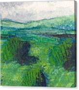 Land 1 Canvas Print